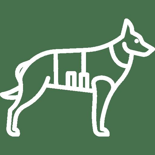 société securité privé maitre chien
